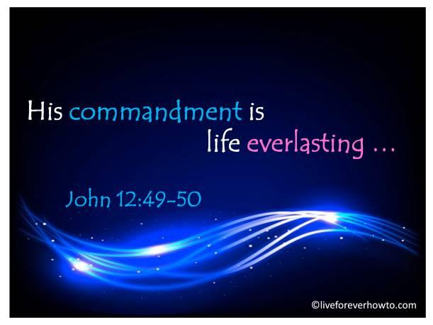 His commandment is life everlasting