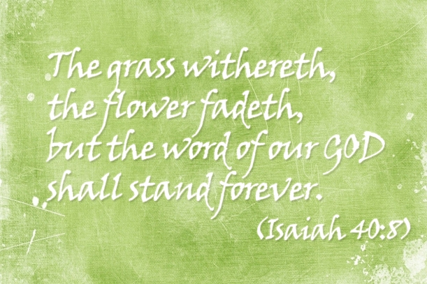The Word of GOD stands forever Isaiah 40:8