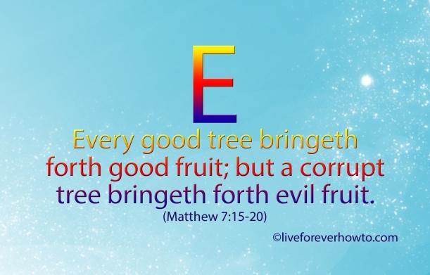 Every good tree bringeth forth good fruit Matthew 7