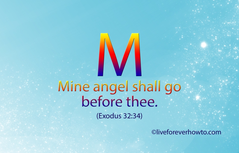 Mine angel shall go before thee