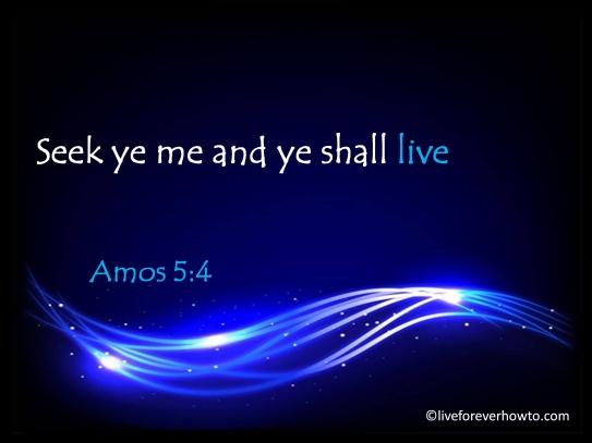 Seek ye me and ye shall live Amos 5:4