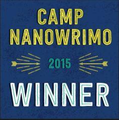 CAMP NANO WINNER 2015