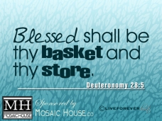 Blessed shall be thy basket and thy store Deuteronomy 28:5
