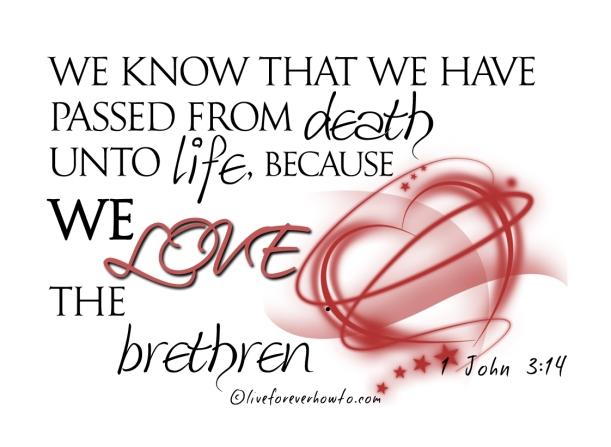 love the brethren