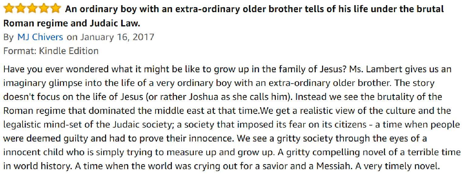 Review Chris Lambert book