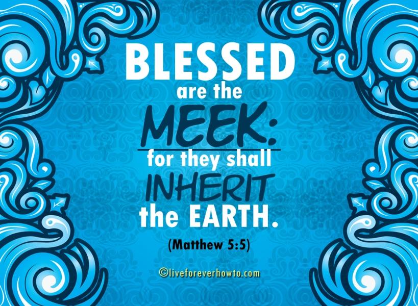 SQ SC Blessings Blue 04 72